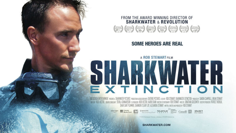 94b4c8044a SHARKWATER EXTINCTION review by Mike Catto